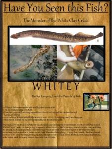whitey-226x300