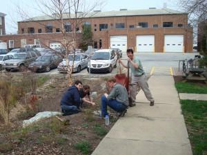 Working at the UD rain garden Apr 2008.JPG